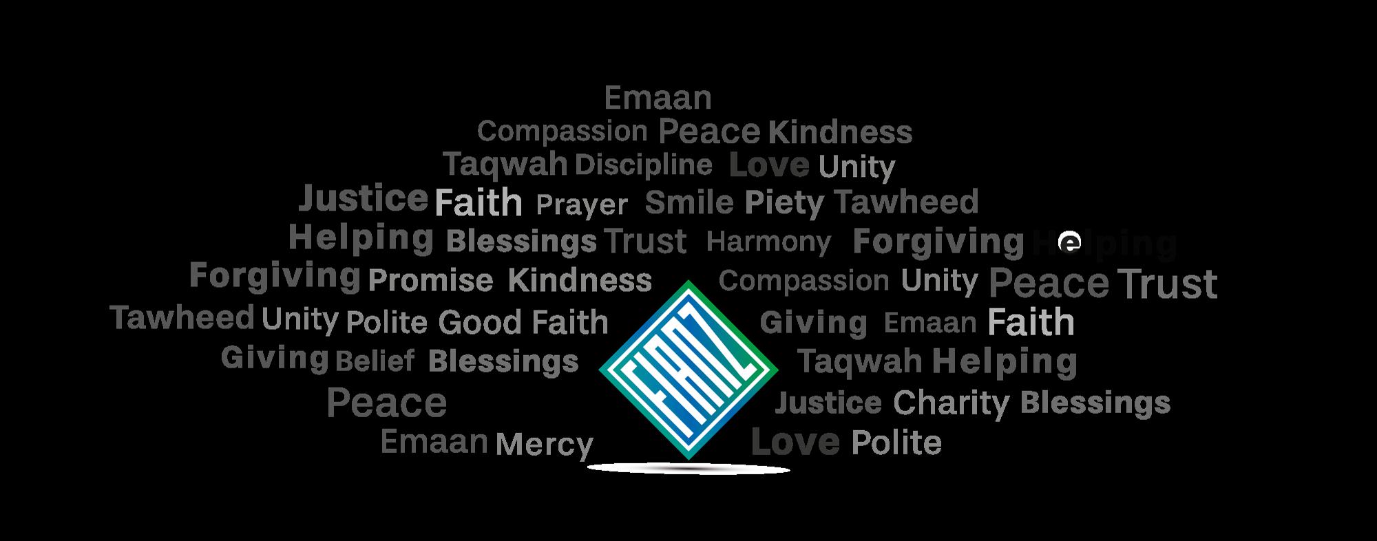 FIANZ-Values1